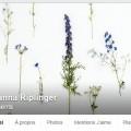Facebook_Johanna_Riplinger